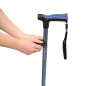 Preview: Walking cane holder