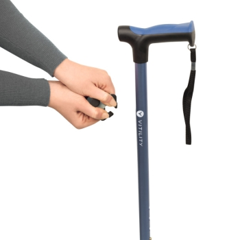 Walking cane holder
